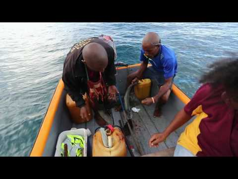 Extreme Fishing, Giropa Point, Oro Province, Papua New Guinea