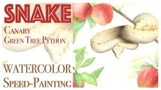 How to paint a snake in Watercolor - Green Tree Python Watercolour Painting
