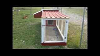 Raising Urban Chickens Back Yard Chicken Coop