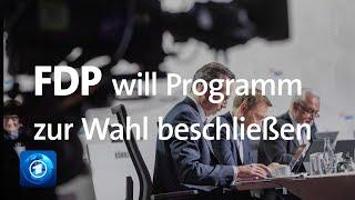 FDP-Parteitag: Liberale wollen Bundestagswahl-Programm beschließen
