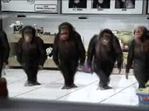 Dance, Monkey dance - Hardstyle