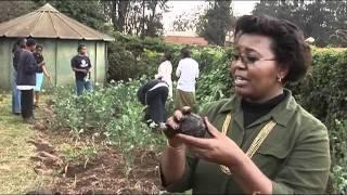 World Challenge Finalists Hawkers Market Kenya - Market Economy (2008)
