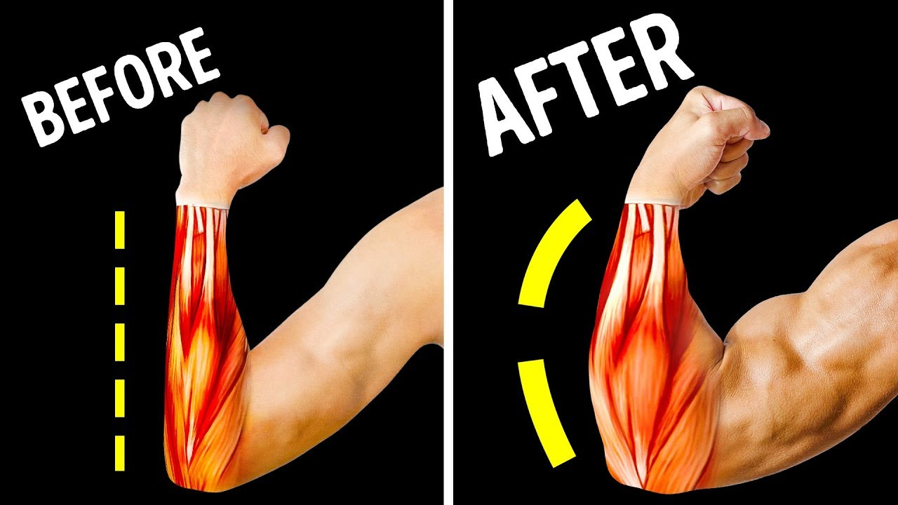 4 BEST Exercises to Grow Forearms at Home