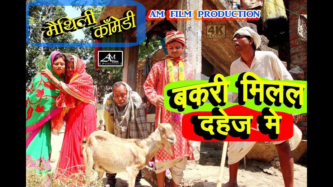 बकरी मिलल दहेज़ में #maithili comedy new #मैथिली कॉमेडी #dhorbacomedy