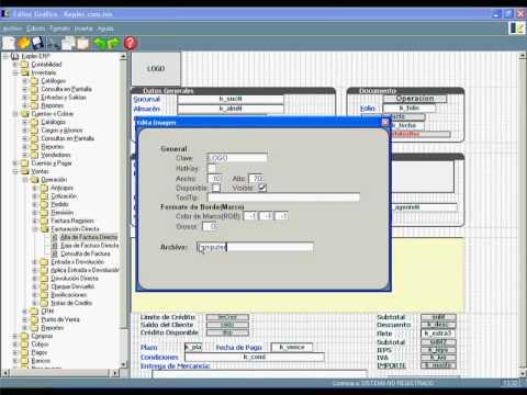 Flexibilidad del ERP KEPLER