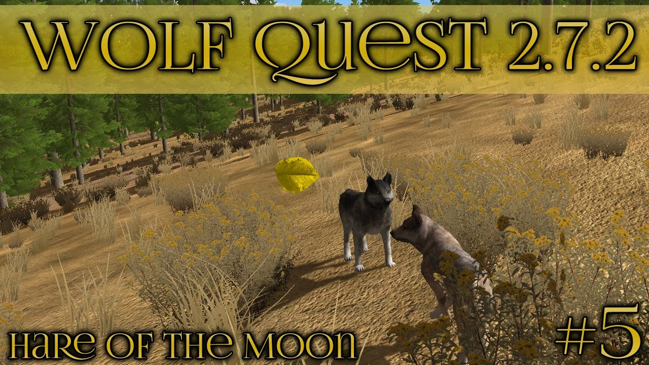 The Wolf Quest