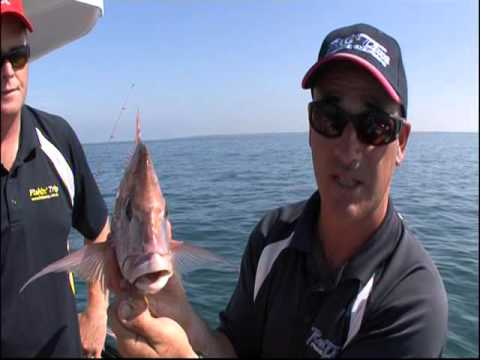 Jason Kennedy and Matt Cini Port Phillip Bay Snapper Reel Time Fishing Charters