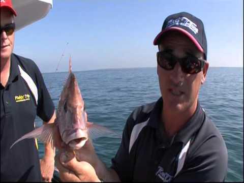 Jason Kennedy And Matt Cini Port Phillip Bay Snapper Reel Time Fishing Charters