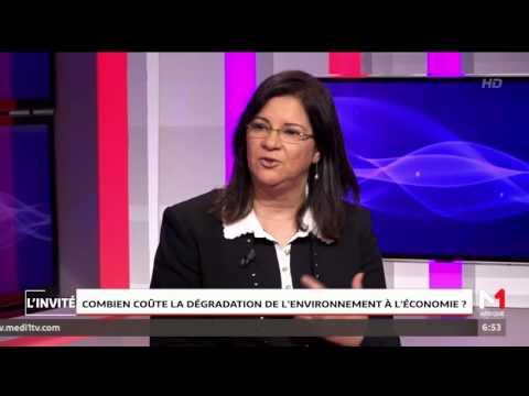 Combien coûte la dégradation de l'environnement à l'economie?