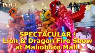 Atraksi Barongsai | Lion & Dragon Fire Show at Malioboro Mall Yogyakarta Part 1