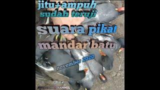 Download terbaru kloburasi suara burung mandar batu/bantiung dgn ruak ruak(mantap)