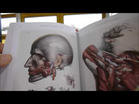 Complete Atlas Of Human Anatomy And Surgery Youtube