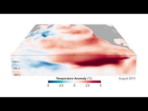The Birth and Death of an El Niño