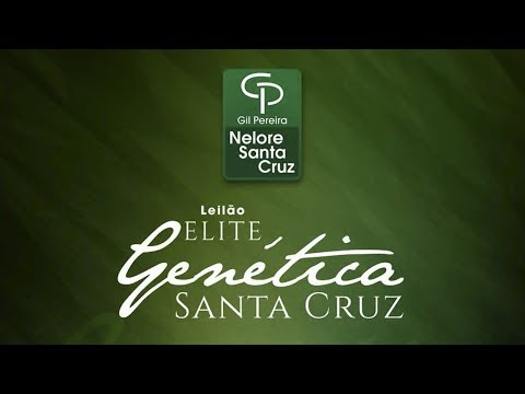 Lote 26   Jaline FIV Santa Cruz   GPO 7576 Copy