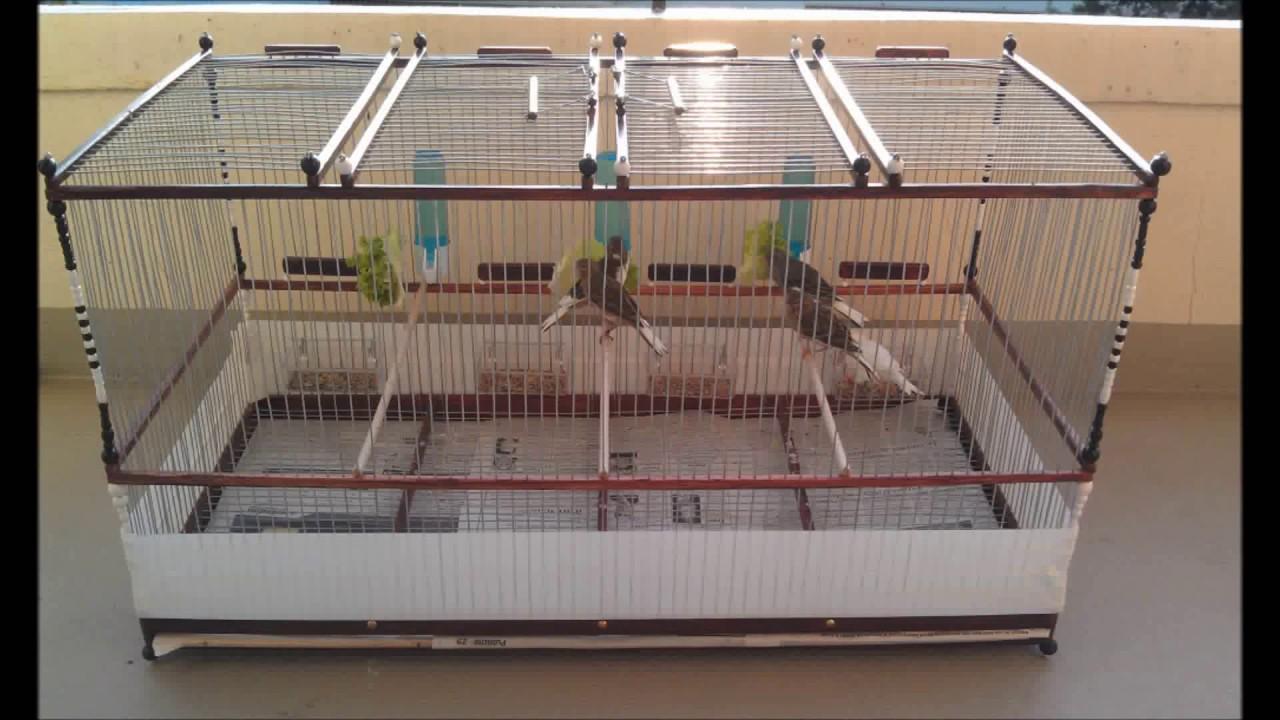 cage bois artisanale youtube. Black Bedroom Furniture Sets. Home Design Ideas