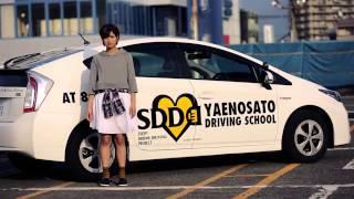 SDD(STOP!DRUNK DRIVING) あなたは何ができますか?飲酒運転を無くす...