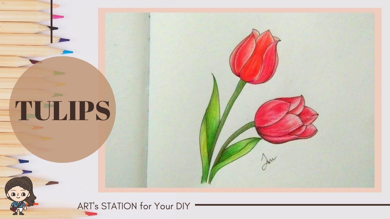 วาดดอกทิวลิปอย่างง่ายๆ สามารถทำตามได้ l How to draw Tulips easy way to learn it.