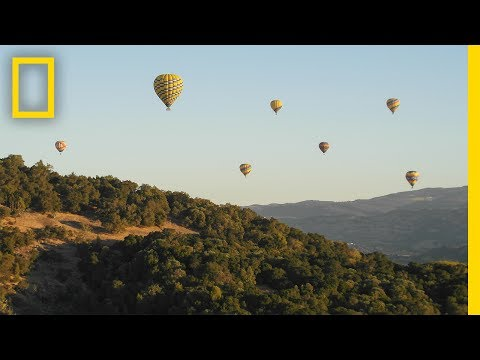 A Napa Valley Nature Walk | National Geographic