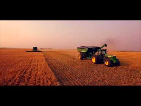 Grace Hill Farms | Alberta and Southwestern Saskatchewan