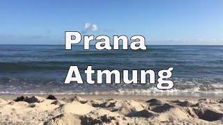 ★ Prana Atmung Unterstützung  | solavana.eu ★