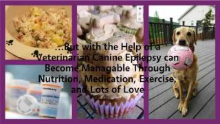Living with Canine Epilepsy Trailer