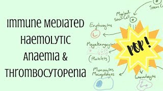 Immune Mediated Haemolytic Anaemia & Thrombocytopenia