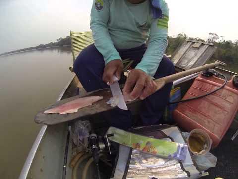 Sashimi de corvina no rio Araguaia - Luiz AlvesGO