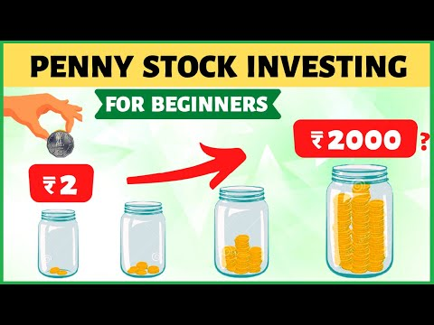 Penny Stock Investing for Beginners | ₹2 to ₹20000?