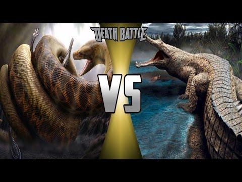 Sarcosuchus Vs Deinosuchus, Who Would Win