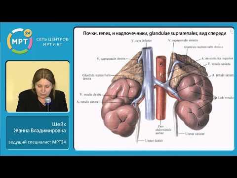 Лучевая диагностика заболеваний надпочечников