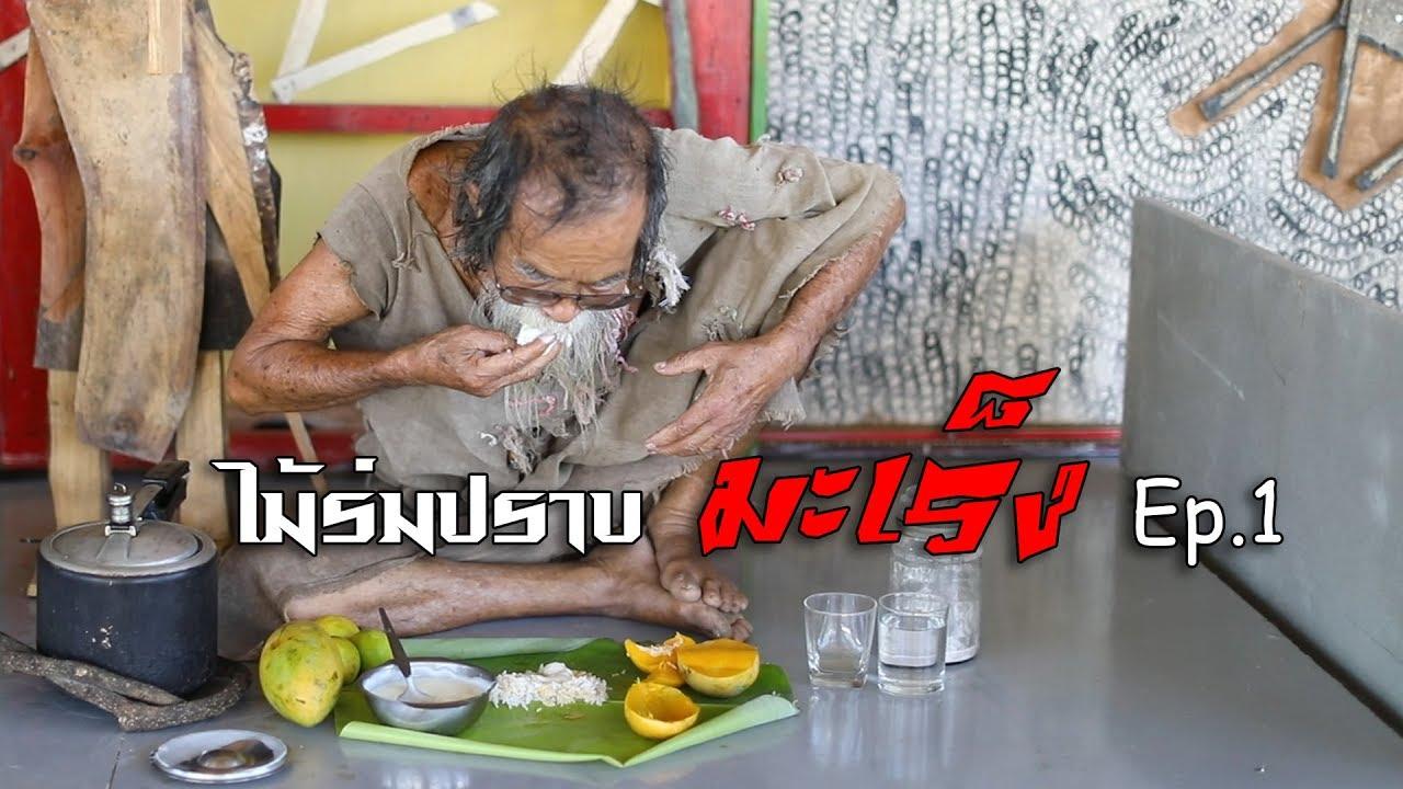 ไม้ร่ม ปราบมะเร็ง (Mairom  Thammachati-asoka)