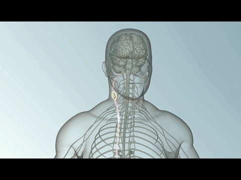 Bioelectronic Medicine: A medical breakthrough within your own body