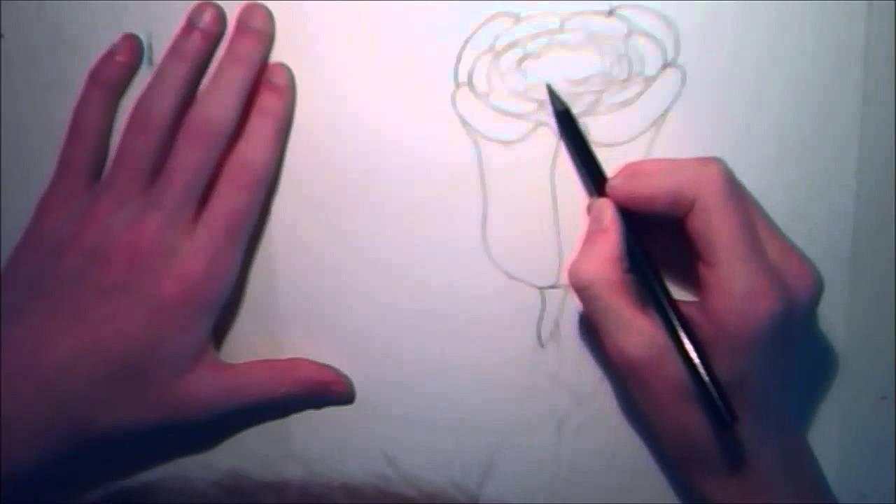tuto apprendre dessiner une rose designfoxart youtube. Black Bedroom Furniture Sets. Home Design Ideas