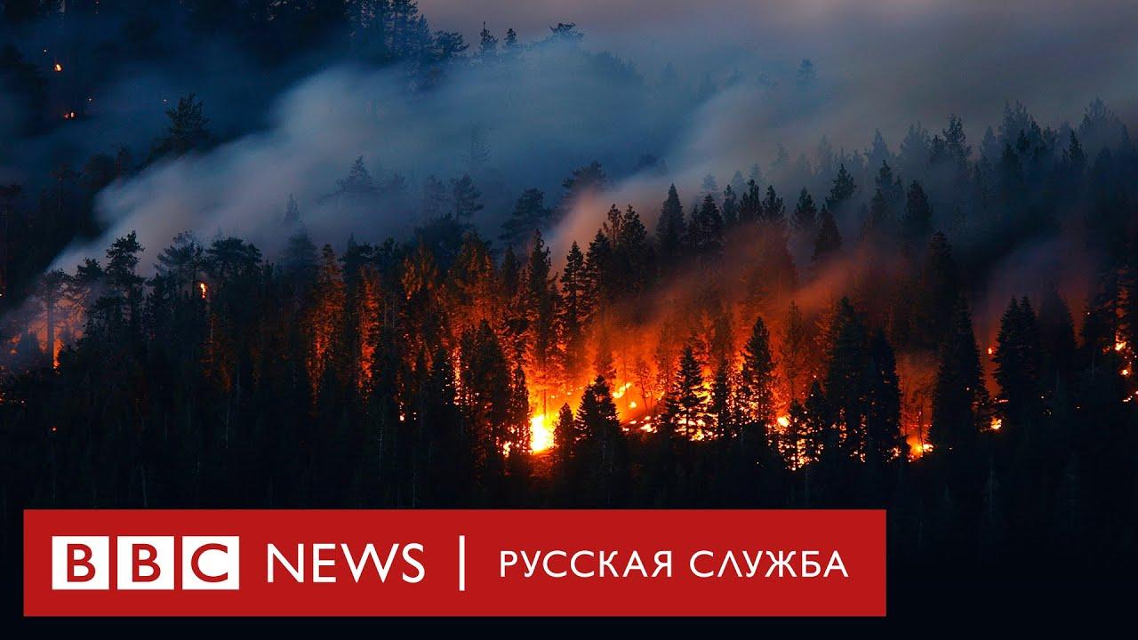В России горят уже почти 100 Молдавий