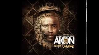 AKON - twinkle in youre eye 2013