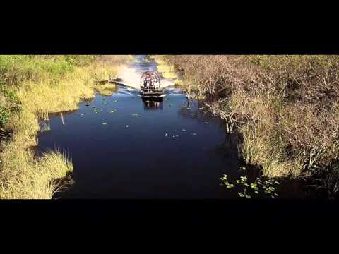 Drone extreme flight Everglades
