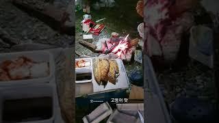 낚시 캠핑가서 고등어 튀김 ㆍ병브라더스ㆍ뱅플라이