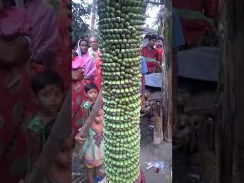 Assam news video