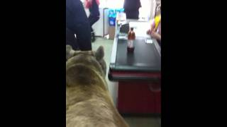 Настоящий медведь в супермаркете!!! (часть 4)