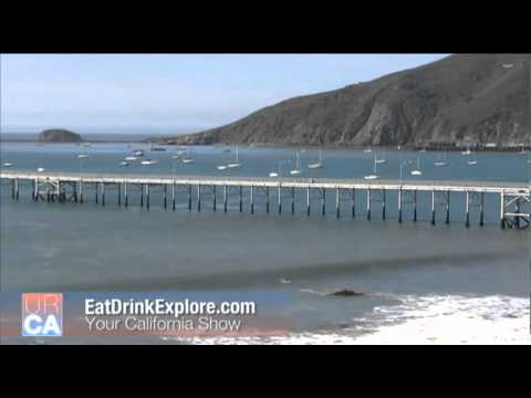 Tsunami hits California (America) due to japan's quake 11 march 2011