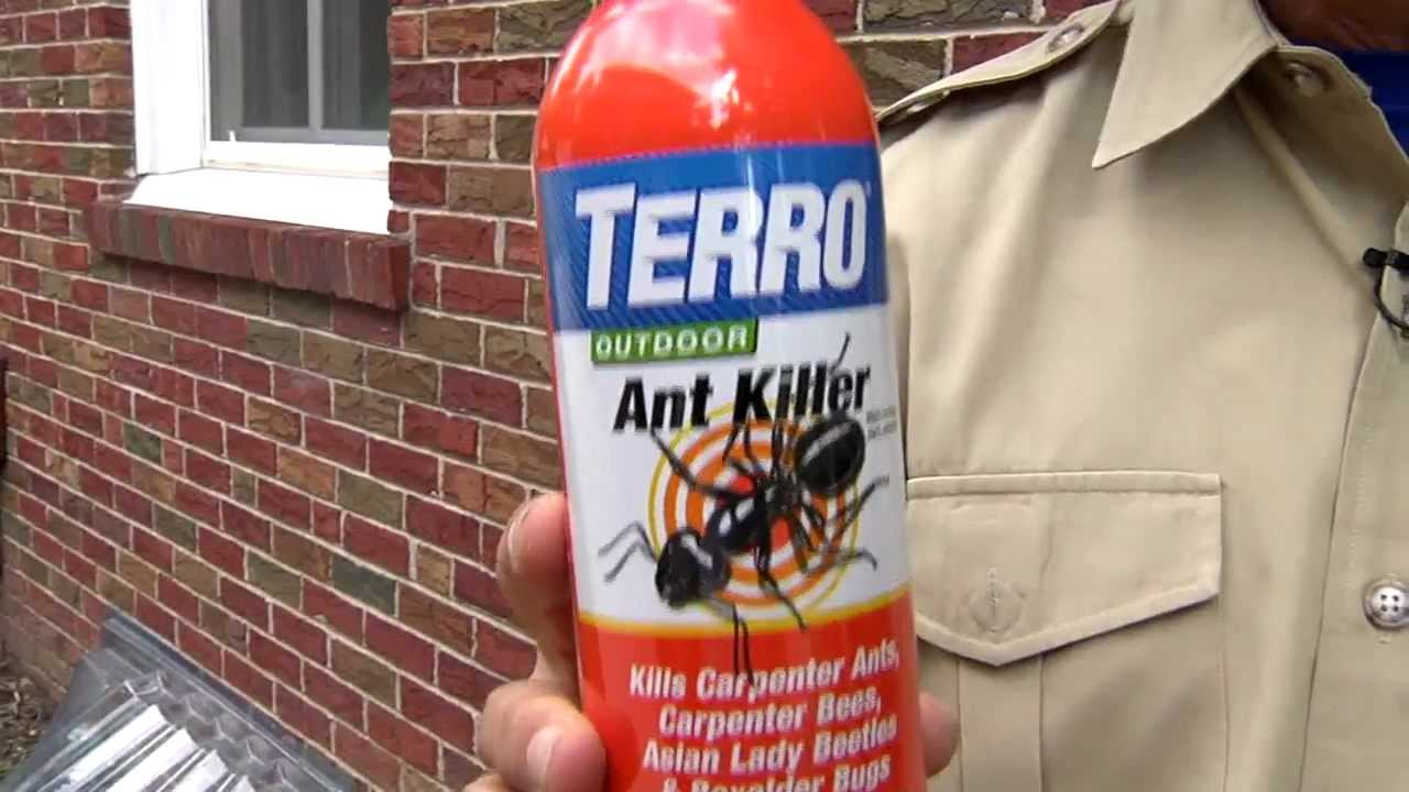 Terro Outdoor Ant Killer Spray Youtube