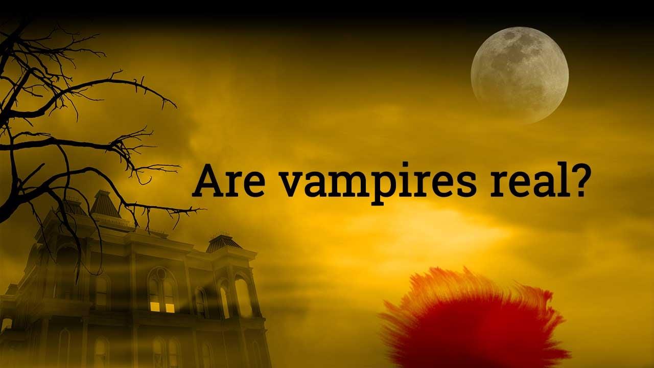 Vampire datieren online