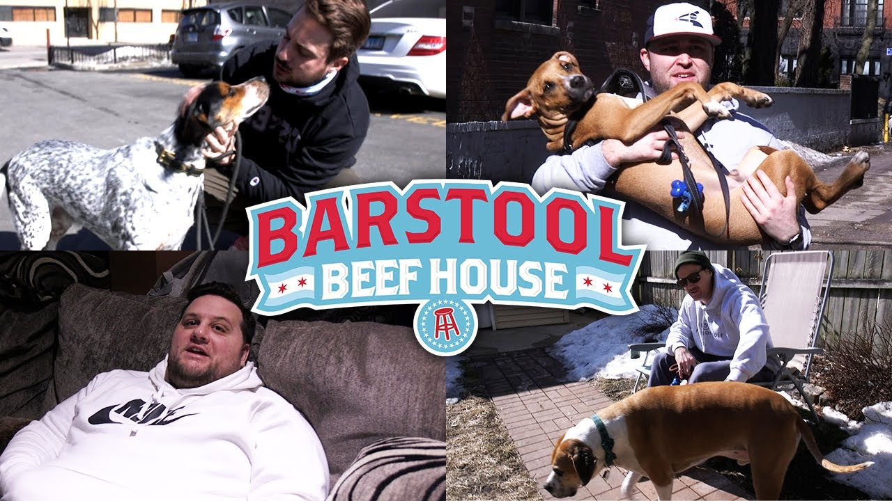 Meet the Dogs of Barstool Chicago | Beef House Vol 15