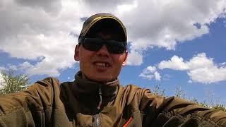 Караганда рыбалка на карпа 33 шахта карпики радуют своими поклевкой