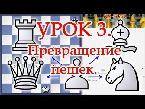Превращение пешек - Урок 3 для начинающих. Шахматы.