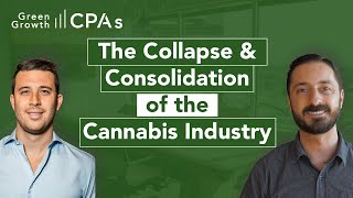 The 2020 Collapse and Consolidation of the Cannabis Industry (Q&A)