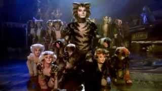 Cats the Musical - London Palladium