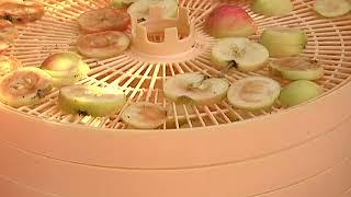 Время. Урожай яблок - заготовки и варенье