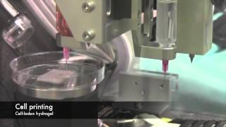 Wake Forest 3D Bioprinting System