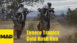 Tenere 700 - Tenere Tragics Gold Rush Run - Motorcycle Adventure